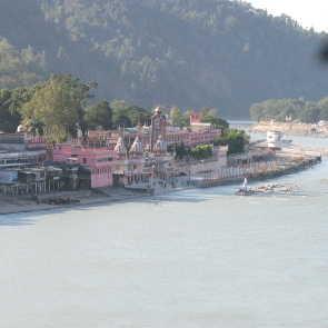 Suche nach richtigen Yogis in Rishikesh